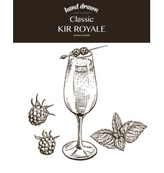 Kir royale sketch vector