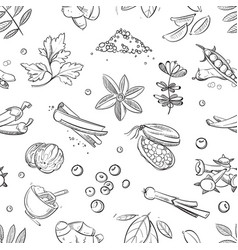 fresh herbs and spices doodle hand drawn vector image vector image