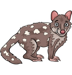 tiger quoll animal cartoon vector image