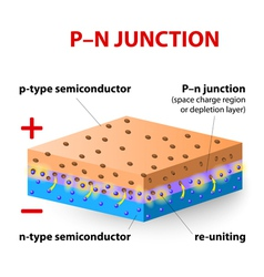 P-n junction vector