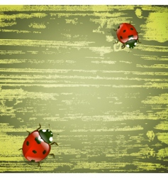 Spring ladybirds vector