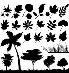 flower leaf and trees vector image vector image