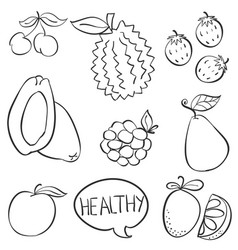 Fruit hand draw doodle style vector