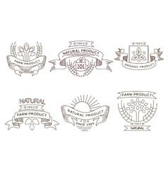 Retro farm fresh labels badges and design vector