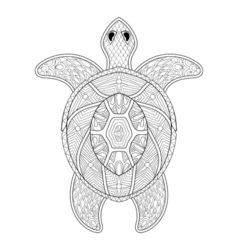Turtle in zentangle style freehand sketch for vector