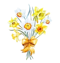 Watercolor spring flowers vector image
