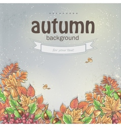 Background image for your text with autumn leaves vector