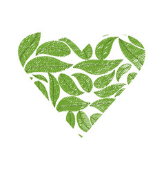 Drawing green leaves shape heart vector