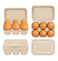 Egg carton consumer pack set vector