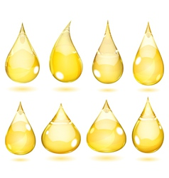 Opaque drops in saturated yellow colors vector