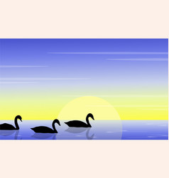 Beauty swan on lake scenery silhouette vector
