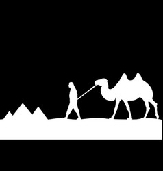 man with camel of the pyramids vector image