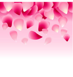 Floral pink background decorated with rose petals vector