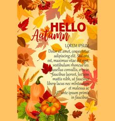Hello autumn banner with orange leaf and pumpkin vector