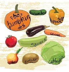 Hand drawn vegetables set watercolor effects vector