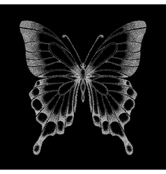 Graphic black and white butterfly vector