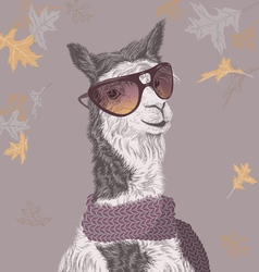 Lama on the autumn background vector image vector image