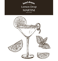 Lemon drop martini sketch vector