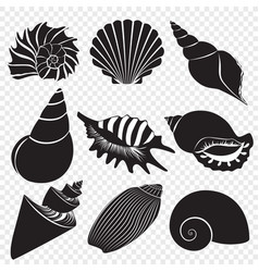sea shells black silhouettes isolated on vector image vector image