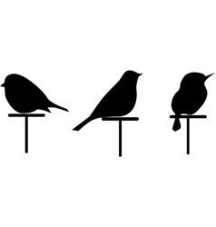 Images silhouettes of 3 birds set vector