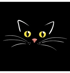 Cat face on black background vector image