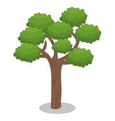 Tree forest nature icon vector