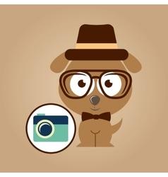 hipster dog symbol camera design vintage vector image