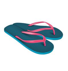 A pair of beach flip-flops vector