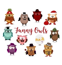 Funny owls set Cute cartoon owls fashion costume vector image vector image