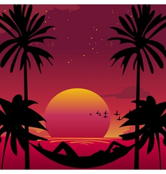 paradise vector image