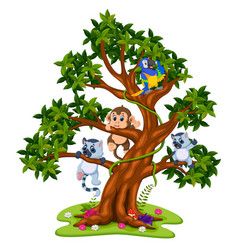 cute baby animal on the tree vector image vector image