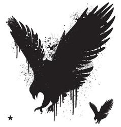 stencil hawk vector image