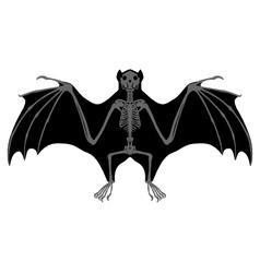 Bat skeleton vector image