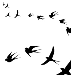 a flock of flying birds vector image