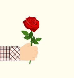 Man holding in hand red rose vector