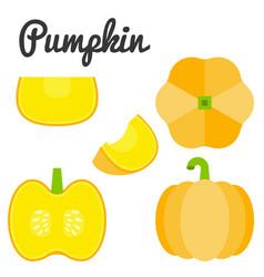 Pumpkin vector