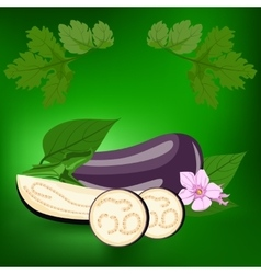 Eggplant healthy lifestile vector