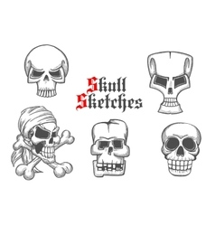Skeleton skulls sketch icons set vector