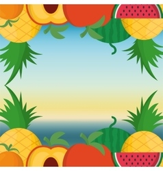 Fruits frame and summer concept vector