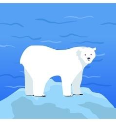 Polar bear ursus maritimus on piece of ice vector