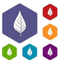 Apple tree leaf icons set hexagon vector
