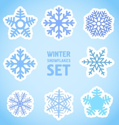 Winter snowflakes set vector image