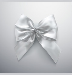 white bow and ribbons vector image