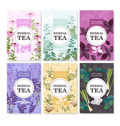Herbal tea colored banners set vector