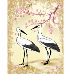 sacra and stork vector image