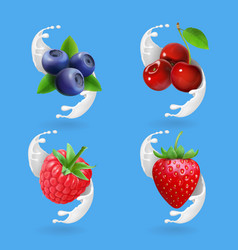 berries and yogurt cherry blueberry strawberry vector image