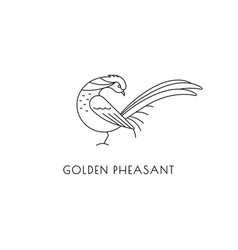 golden pheasant outline icon vector image