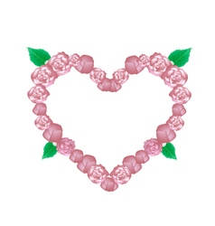 Pink glory bower flowers in heart shape vector