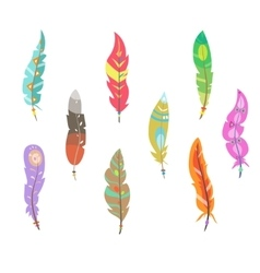 Colored Feathers Set vector image vector image