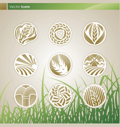 Wheat and rye logo vector